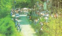 Один из «десяти тысяч поворотов» «Тур де Коре»