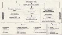 Структура ФИА